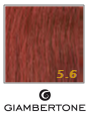Giambertone Glamour Extensions 50 cm # 5.6